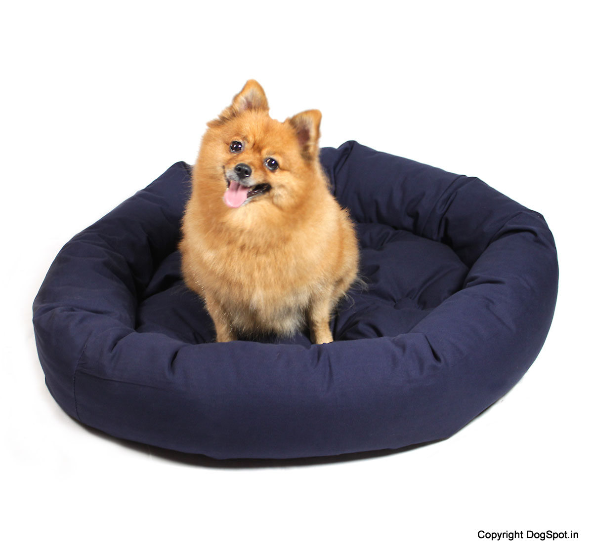 Comfertable Dog Bed