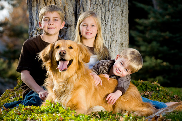 5 Dog Breeds That Are Great With Kids Dogspot In