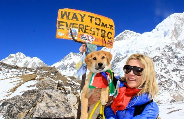 first dog climb to mt. everest