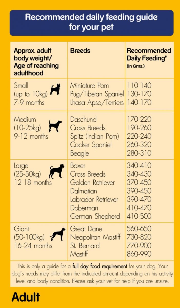 Pedigree Dog Food Age Chart