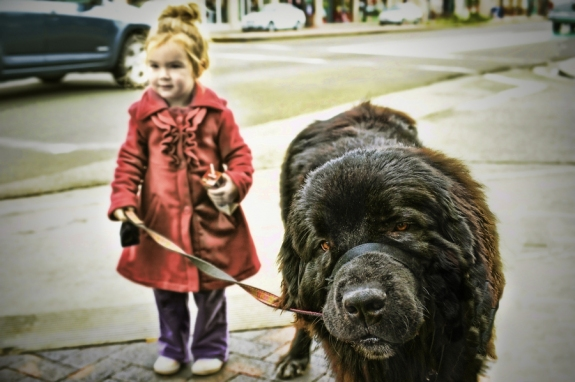 5 Dog Breeds That Are Great With Kids | Dogspot.in