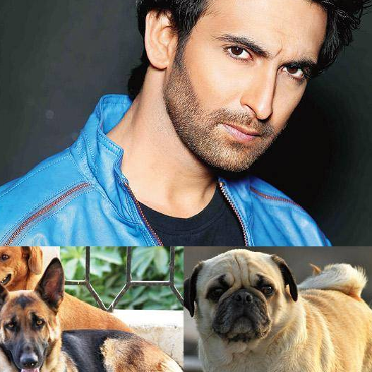 Nandish Sandhu Dog