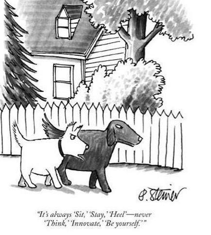 dog-training-cartoon-think-innovate1