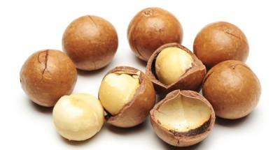 Macadamia-Nuts-Main