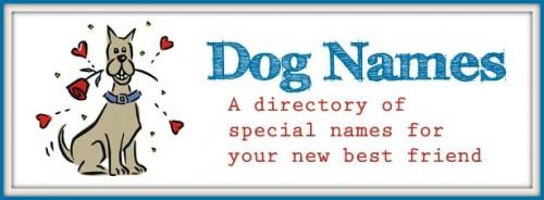 dog-namesWEBframe