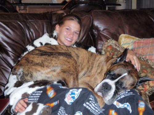 lap dog 3