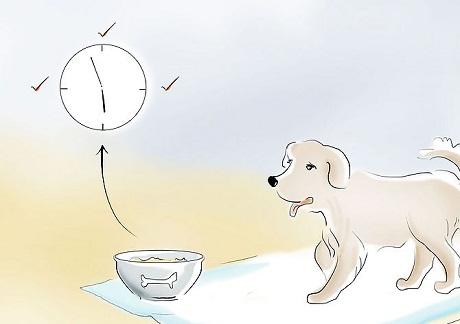 potty training 6