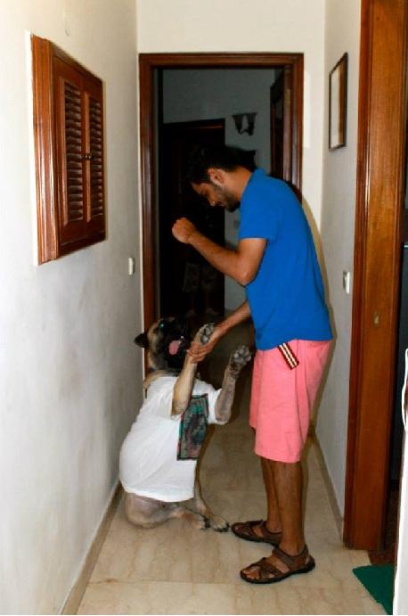 adnan and homer