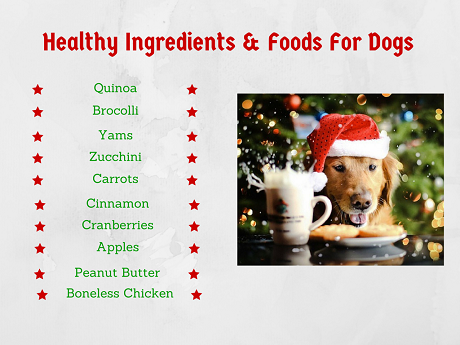 Healthy Ingredients For Dogs