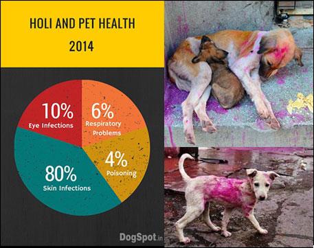 Holi and Pet Health 2014