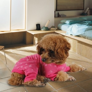 Dog-Jumpsuit-Pink-Blue-Dog-Clothes-Pet-Clothes-Dog-Costume-Lovely-Product-Puppy-Wearing-Cute-Dog