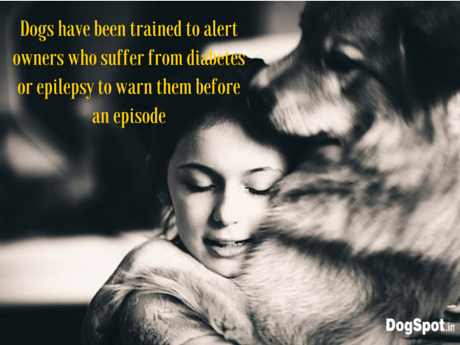 Dogs have been trained to alert owners who