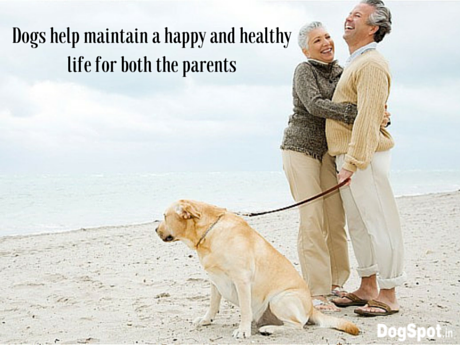 Dogs help maintain a happy and healthy life
