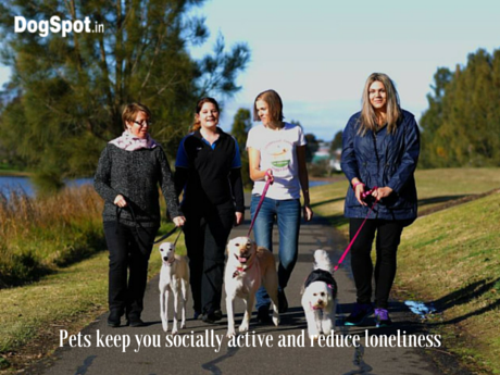 Pets keep you socially active and reduce