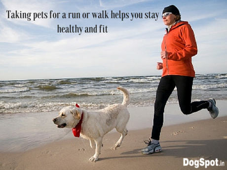 Taking pets for a run or walk helps you