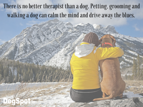 There is no better therapist than a dog.