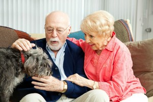 old-couple-touching-their-dog