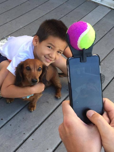 6169564_pooch-selfie-a-tennis-ball-smartphone-attachment_ba9979c_m