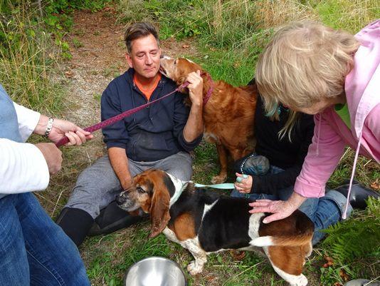 635781923185067590-Vashon-Rescued-Dogs-2