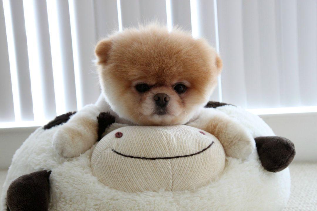 Hugging-Boo