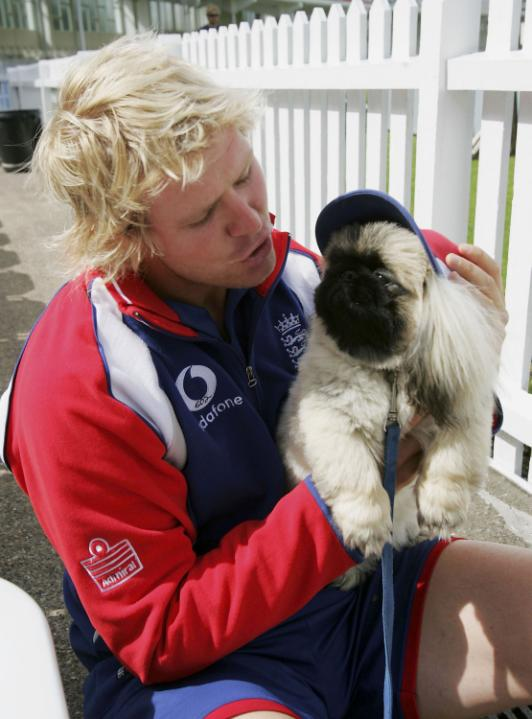 NOTTINGHAM, ENGLAND - AUGUST 23: Matthew Hoggard of England plays with Jonathan Agnew's six month old pekingese called ' Hoggard' during the England nets session prior to the 4th Ashes npower Test Match at Trent Bridge on August 23, 2005 in Nottingham, England. (Photo by Matthew Lewis/Getty Images)