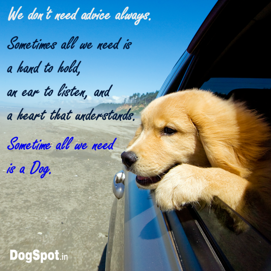 20-dog-quotes11