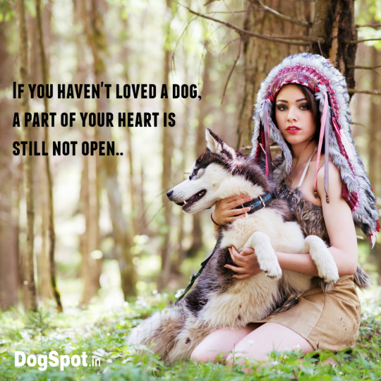 20-dog-quotes14