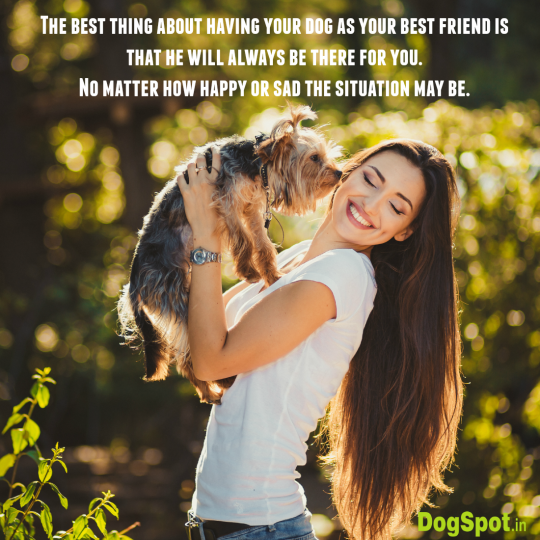 20-dog-quotes19