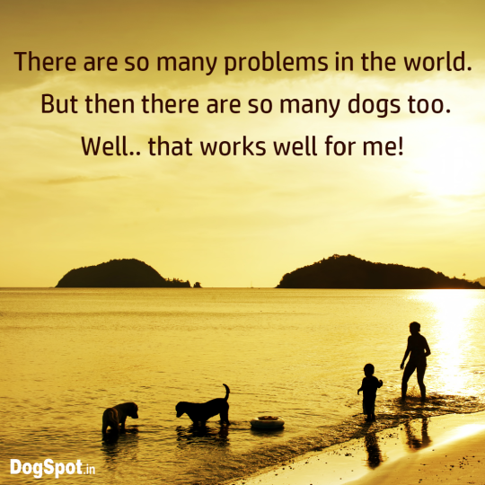 20-dog-quotes4