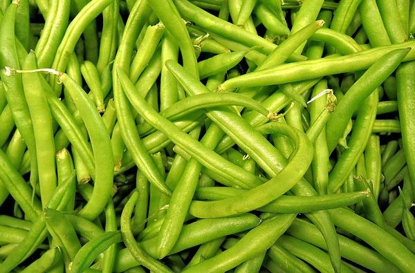 d5-green-beans-1018624_640