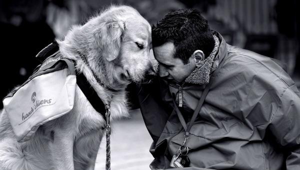 nature-animals-dogs-men-people-monochrome-_2623-521