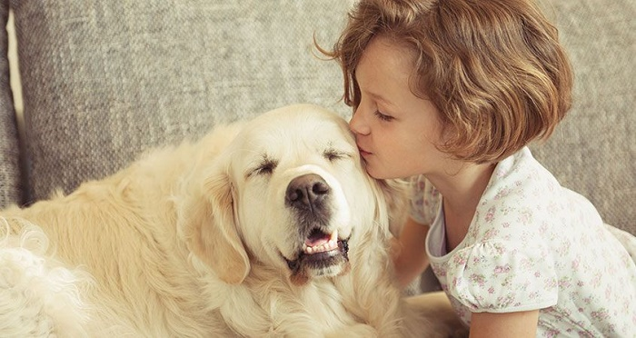 Does-your-dog-love-you