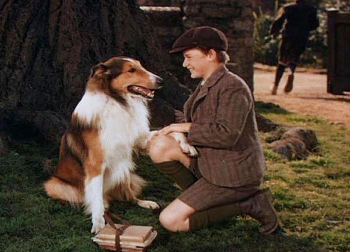 Lassie Come Home (700x505)