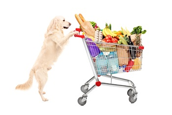 Dog-pushing-grocery-cart