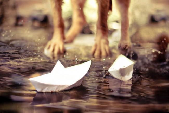 Paper-Boats-1024x683