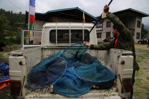 bhutan.catching.dogs_