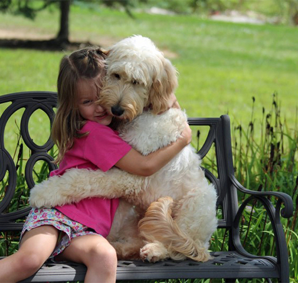cute-dogs-hugging-humans-98