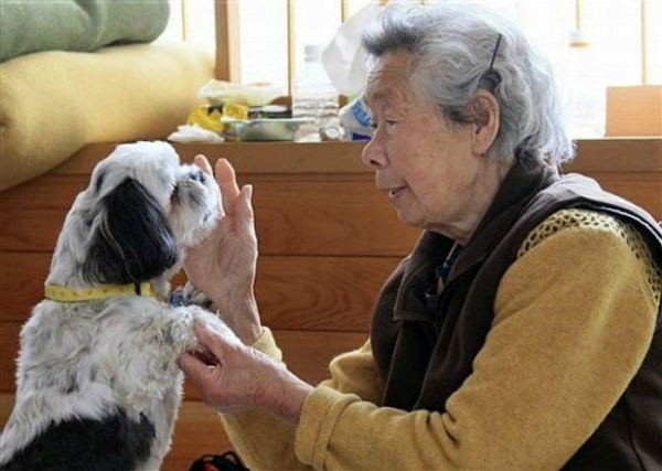 elderly-woman-japanese-dog-600x427