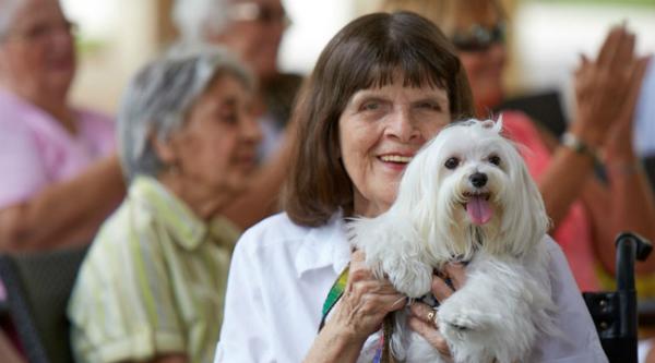 elderly-woman-with-maltese-600x333