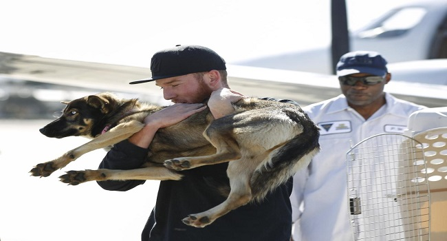 Conner Lamb carries Luna, a 1 1/2-year-old dog that fell off a fishing boat in February, after Luna arrived by a Navy commuter flight Wednesday, March 16, 2016, at Naval Base Coronado in California. Luna was found Tuesday on San Clemente Island, a Navy-owned training base 70 miles off San Diego. (Hayne Palmour IV/The San Diego Union-Tribune via AP)  NO SALES; MANDATORY CREDIT