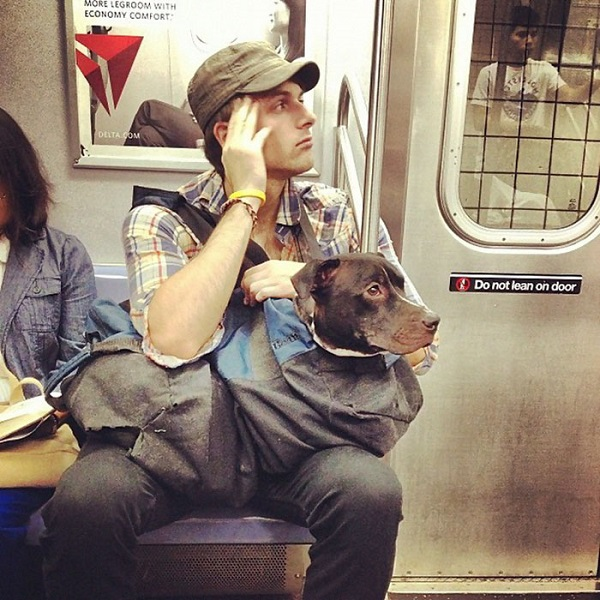 man-with-giant-dog-tote-bag-new-york-subway-4