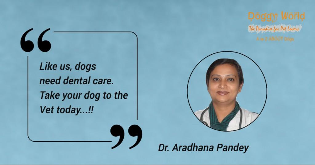 dr-aradhana-pandey